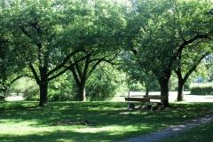 park1web